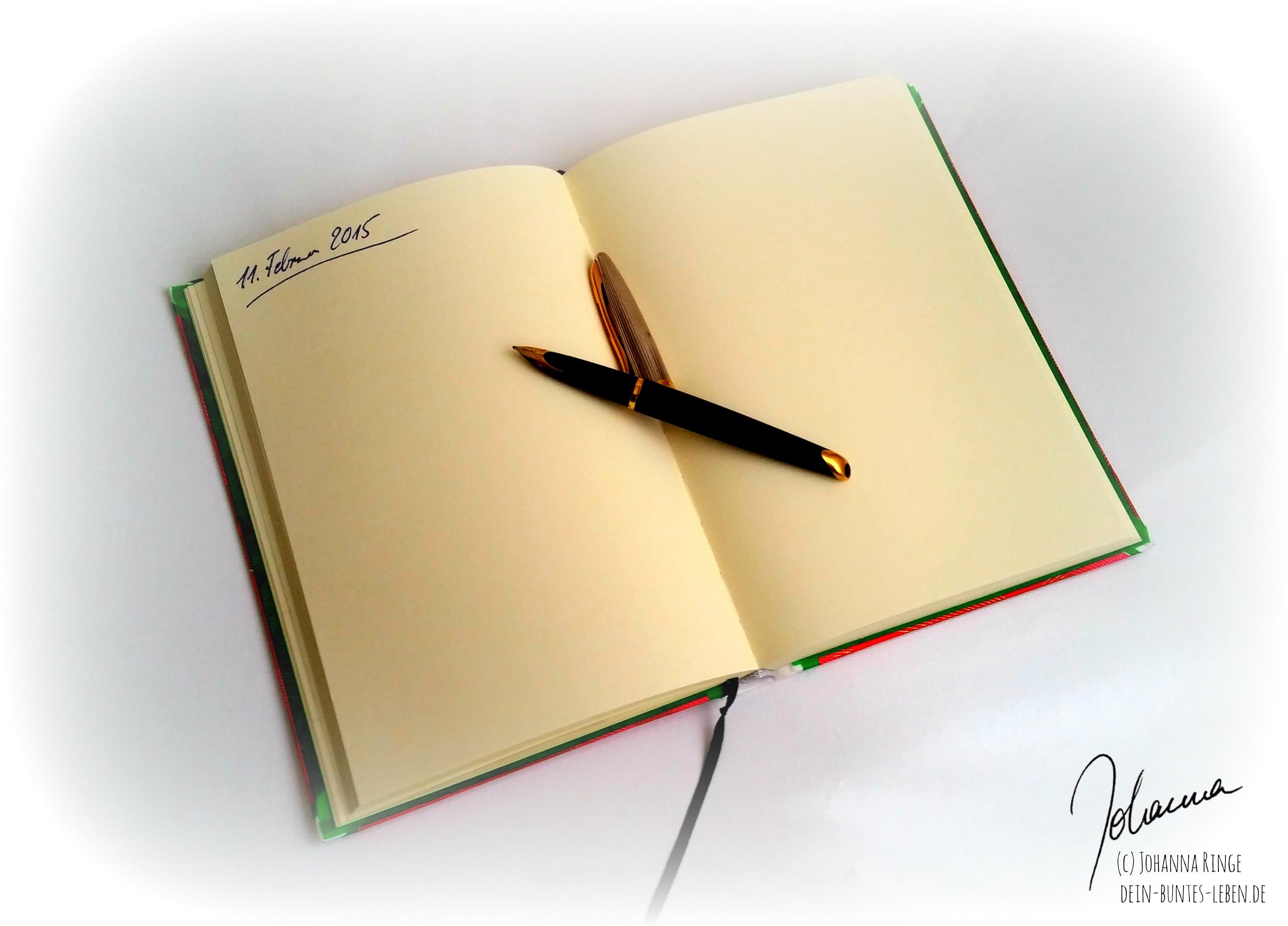 Selbstgespräch im Tagebuch (c) Johanna Ringe