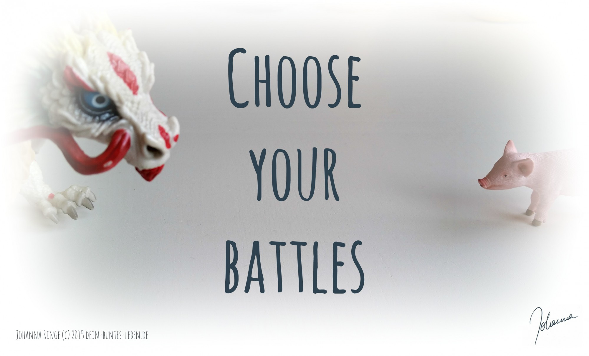 Choose your battles (c)2015 Johanna Ringe