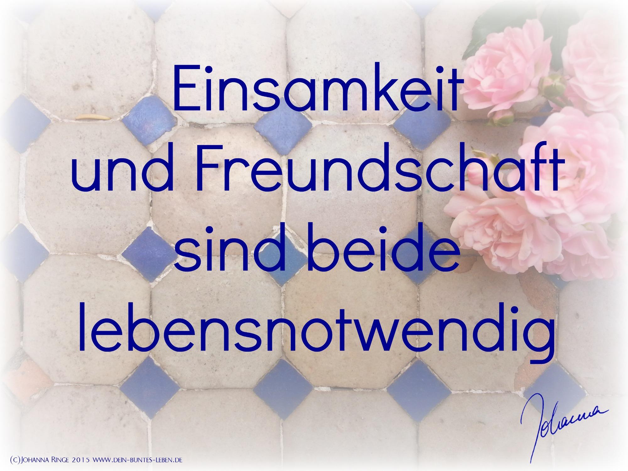 Einsamkeit & Freundschaft sind beide lebensnotwendig (c)Johanna Ringe 2015 www.dein-buntes-leben.de
