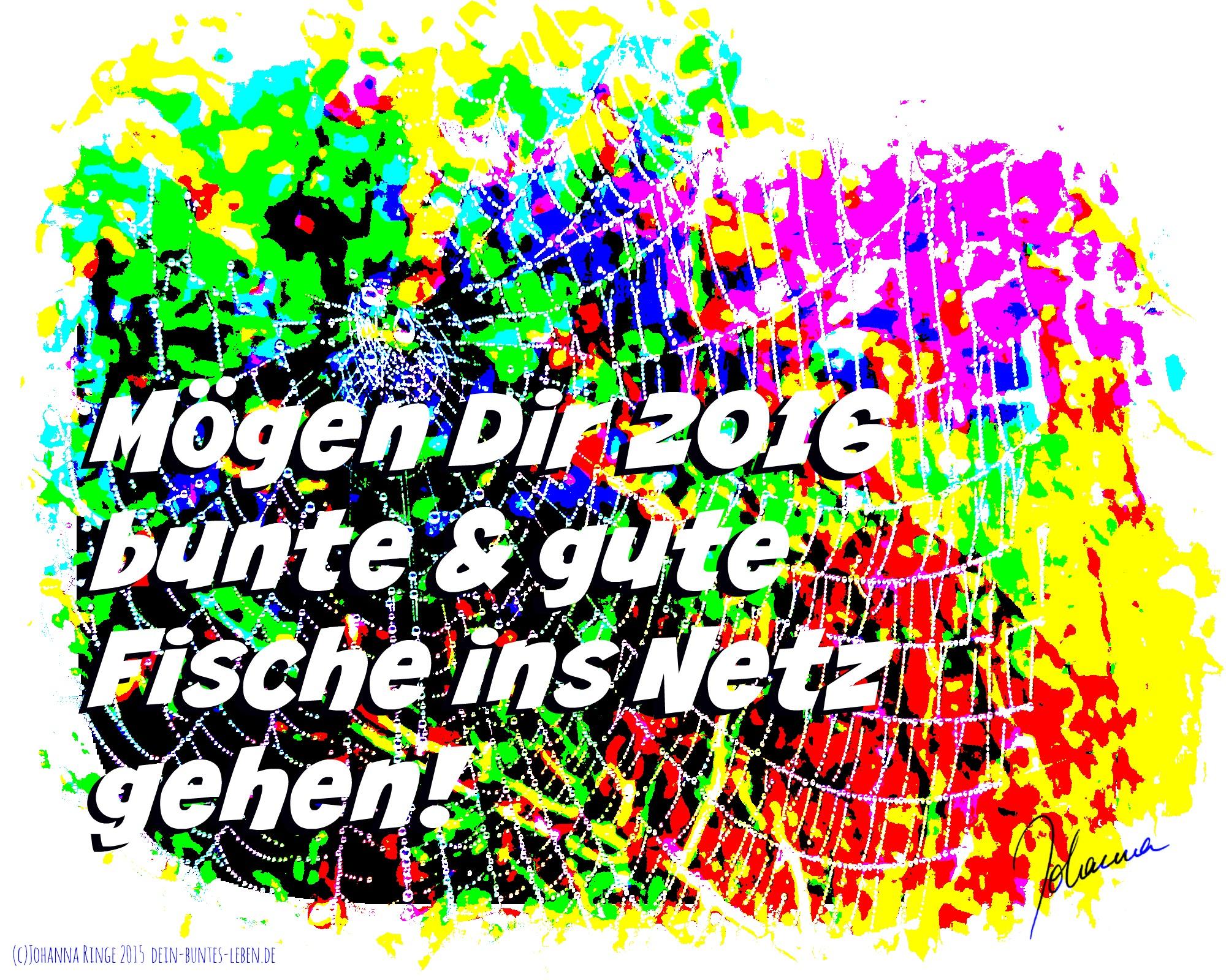 Nach was fischst du 2016? (c)Johanna Ringe 2015 dein-buntes-leben.de