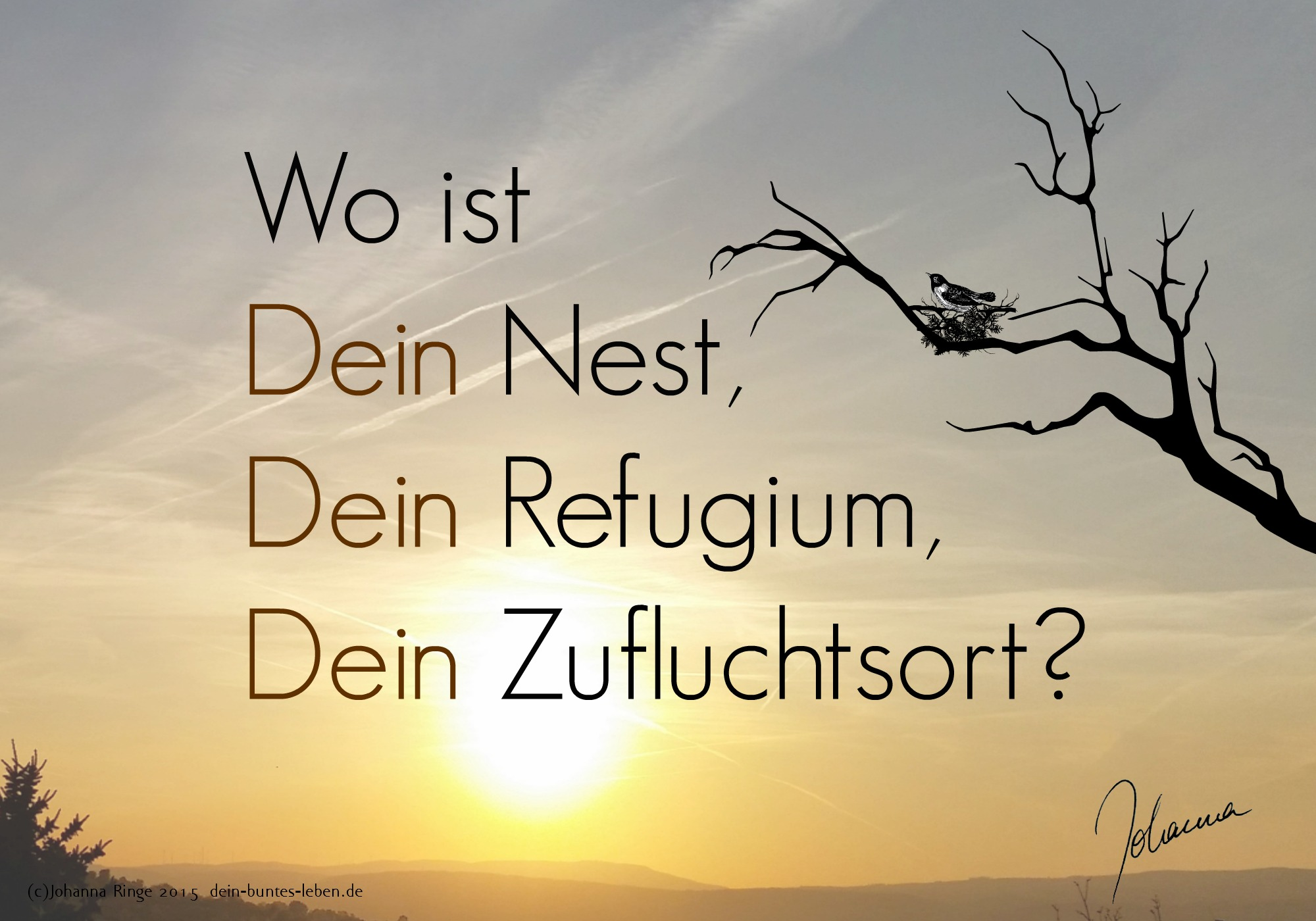Wo findest Du Zuflucht? (c) Johanna Ringe 2015 dein-buntes-leben.de