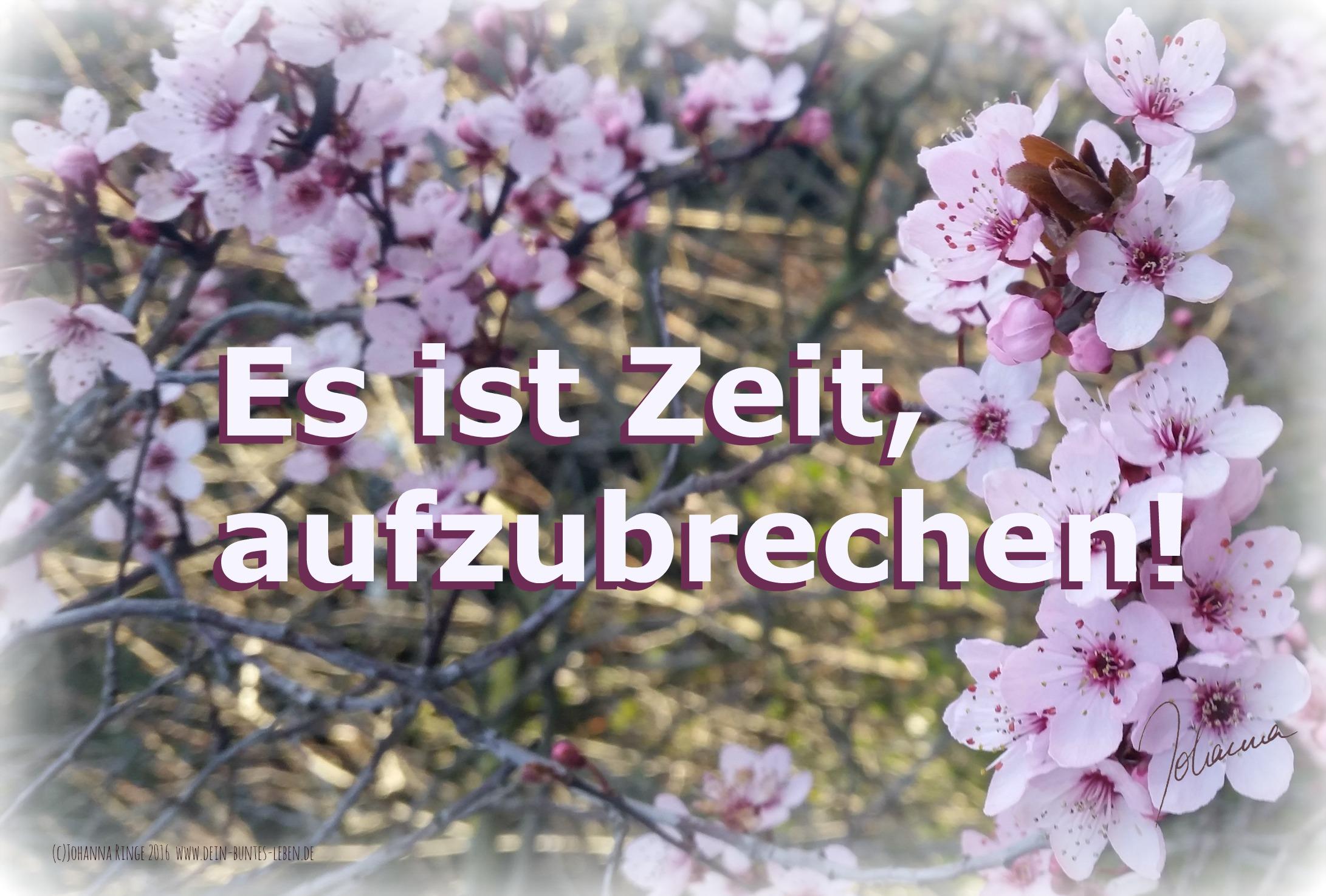Dein Weg zum Glück: Es ist Zeit aufzubrechen! (c) Johanna Ringe 2016 www.dein-buntes-leben.de