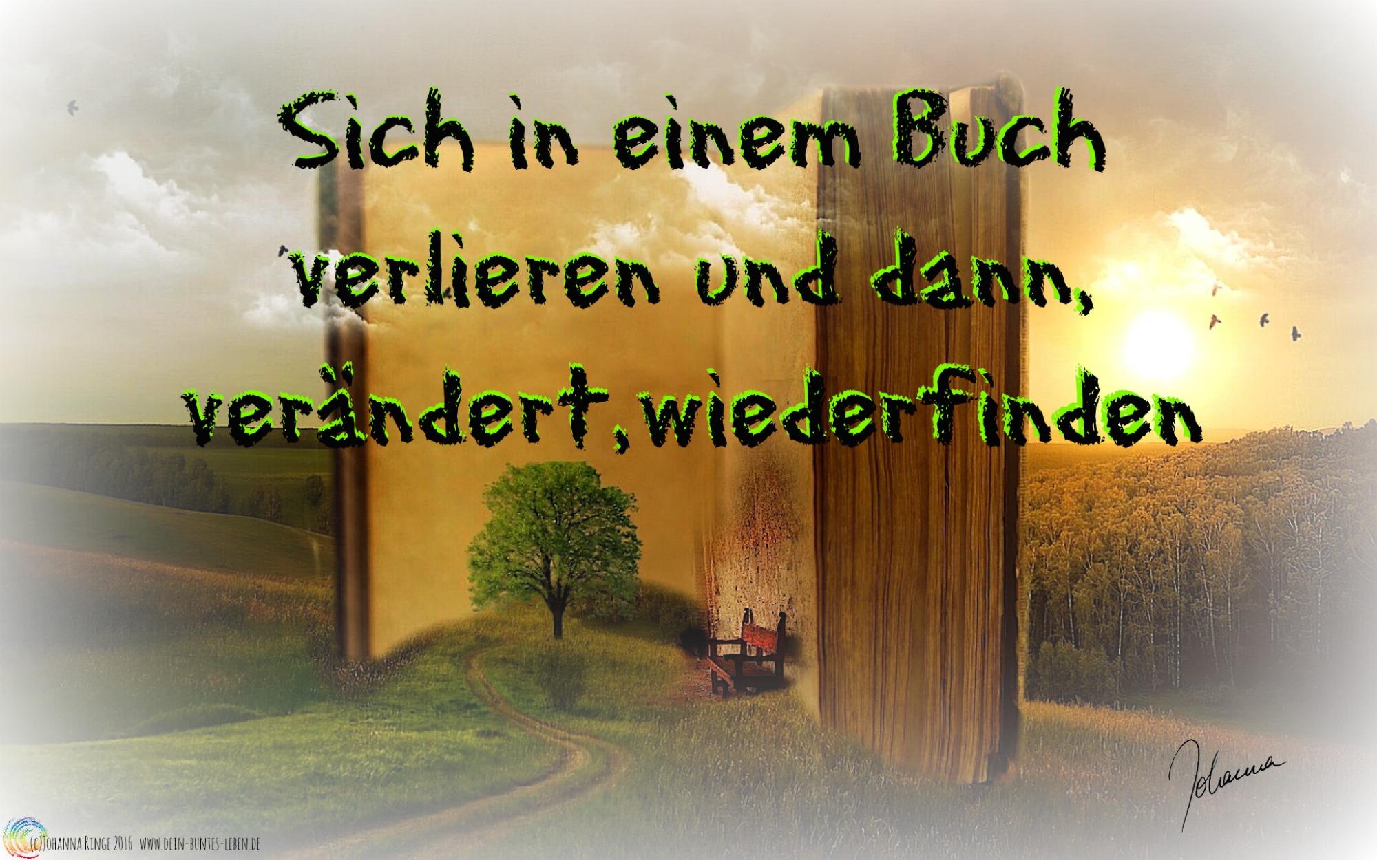 Sich in einem Buch verlieren und verändert wiederfinden (c)Johanna Ringe 2016 www.dein-buntes-leben.de