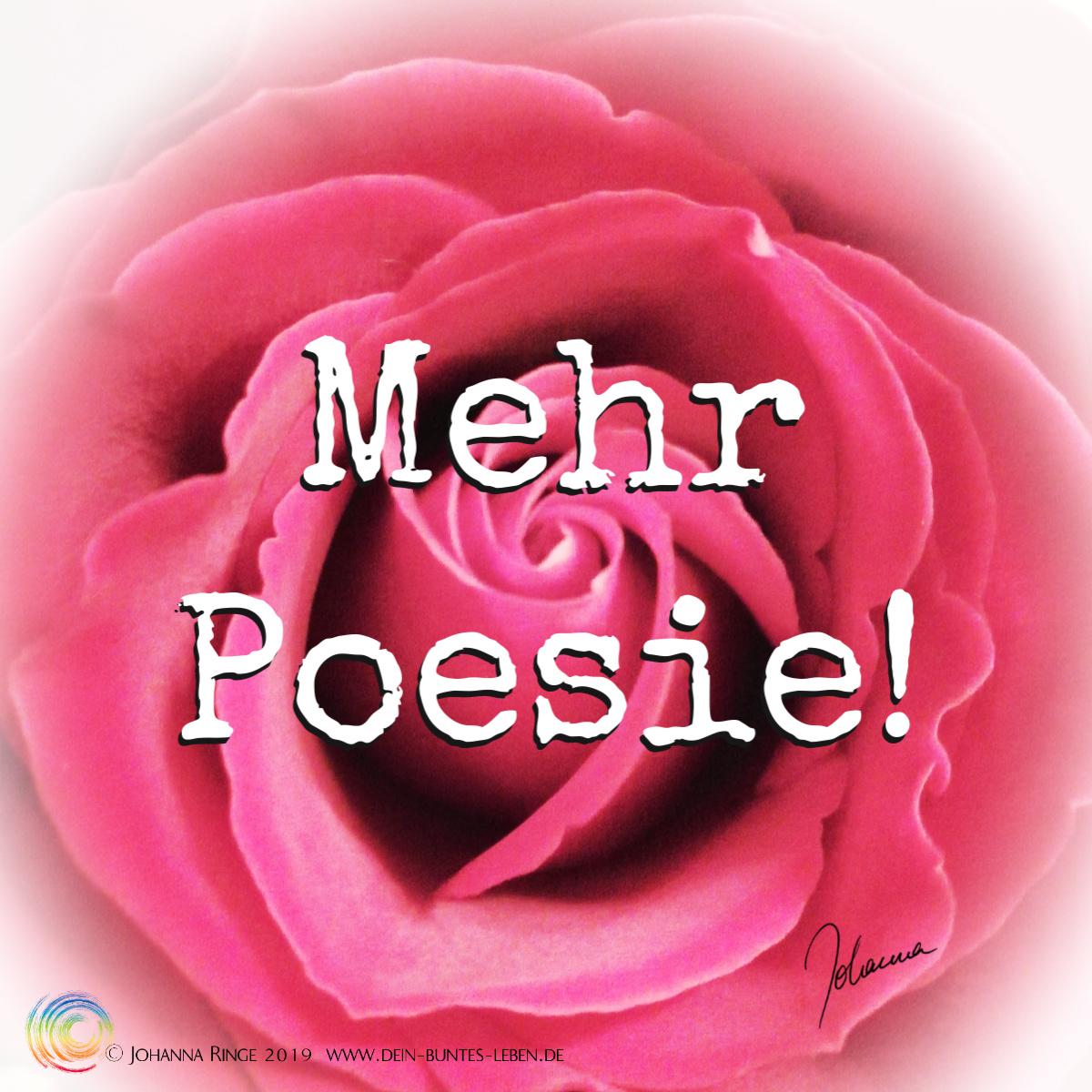 Mehr Poesie! als Text über dem Foto einer Rosenblüte. ©Johanna Ringe 2019. www.dein-buntes-leben.de