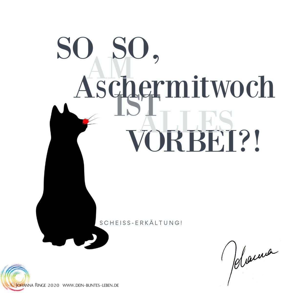 Soso, an Aschermittwoch ist alles vorbei?! (Katzensilhouette mit roter Nase) ©Johanna Ringe 2020 www.dein-buntes-leben.de