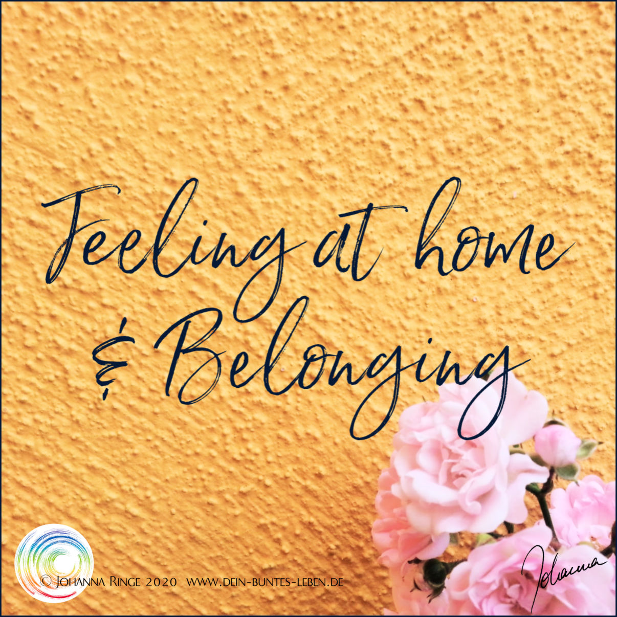 Feeling at home & belonging, text on photo of Roses before a wall. ©Johanna Ringe 2020. www.johannaringe.com